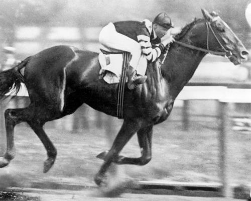 Man o' War Fastest Horse