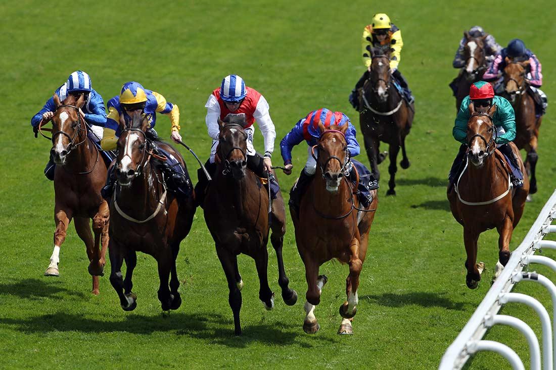 Horse Racing Olympics